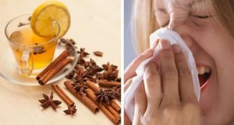 Tisana curcuma e cannella: un toccasana naturale contro i mali di stagione