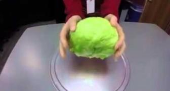 Aqui mostramos como remover el centro de la ensalada en menos de 5 segundos!