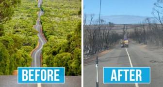 Diese beiden Fotos zeigen im Vergleich die ganze verheerende Kraft der Brände in Australien