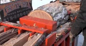 Here's the machine that cuts tree trunks as if they were breadsticks !