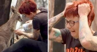 Diese Frau weint verzweifelt, als sie entdeckt, dass ihr Känguru-Heim vom Feuer zerstört wurde
