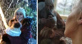 Ein weiblicher Orang-Utan nähert sich einer Frau, die ihr Kind stillte, und fühlt mit ihr mit