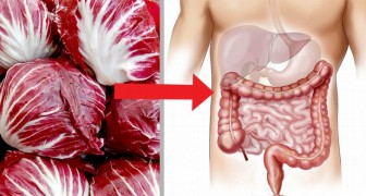 Il radicchio è un ortaggio ricco di proprietà antiossidanti che può aiutare a pulire il tratto intestinale