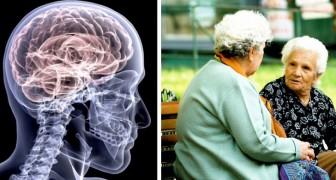 Enligt en undersökning skulle det att prata mycket kunna vara bra för hjärnans hälsa