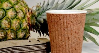 Arriva Pinyapel, il primo contenitore alimentare ottenuto dalle foglie di ananas come alternativa alla plastica