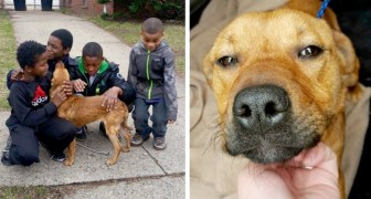 These four young boys rescued a tied-up dog abandoned in front of an uninhabited house