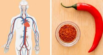 Comer estes 5 alimentos pode contribuir para melhorar a circulação sanguínea