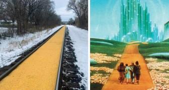 Een goederentrein verliest zijn lading maïs langs de spoorweg: de scène doet denken aan de tovenaar van Oz