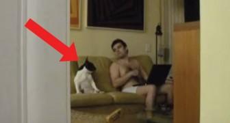 Diese Frau filmt unbeobachtet ihren Ehemann und seinen Hund