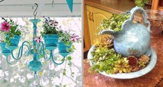 15 soluzioni creative per decorare utilizzando le piante, in casa e non solo