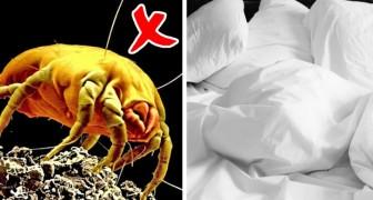 Le lenzuola possono essere un covo di batteri: cambiarle spesso aiuta a prevenire problemi di salute