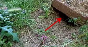 Er hält eine Hand vor ein Loch im Boden und schaut mal, was da raus kommt!