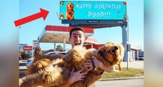 Deze jongen huurde een reclamebord om iedereen op de hoogte te stellen van de verjaardag van zijn hond