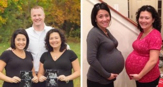 She offers to be a surrogate mother for her sister and then they both become pregnant with twins