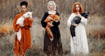 Een vrouw slaagt erin om 3 vossen van verschillende kleuren te fotograferen die de schoonheid van de natuur in al haar nuances tonen