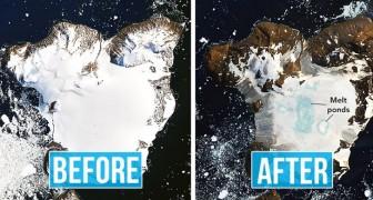 Meer dan 18 graden op Antarctica: beelden van de NASA laten zien hoe snel het ijs smelt