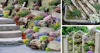 Jardins de rocaille DIY : 17 idées étonnantes pour tout type d'espace vert