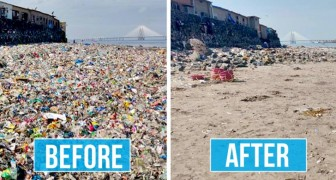 Queste immagini a confronto dimostrano quanto tutto possa cambiare in pochissimo tempo