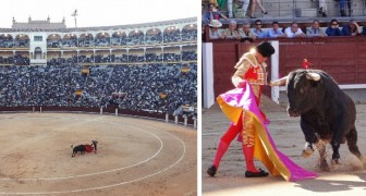Coronavirus, l'Espagne annule 21 corridas : une décision qui sauve la vie de 120 taureaux