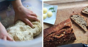 Bread starter and how to make it at home: all it takes is flour, water, and a lot of patience