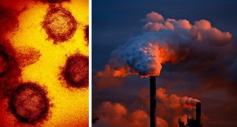 Covid-19, la pollution de l'air peut faciliter la propagation du virus : des études le confirment