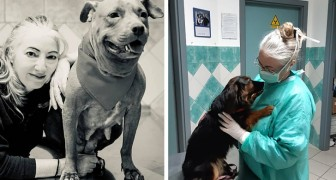 Covid-19, l'appello di una famosa veterinaria italiana: Non abbandonate gli animali, non sono contagiosi