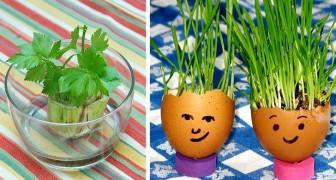 7 divertenti progetti di micro-giardinaggio da provare insieme ai bambini