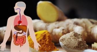 Infusão de gengibre e açafrão: uma bebida digestiva contra a inflamação, amiga do nosso sistema imunológico