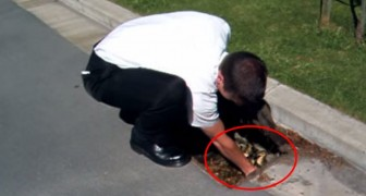 A man hears some noises in a drain: someone needs his help !