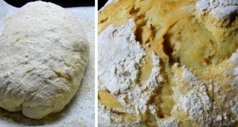 Homemade bread: the recipe for preparing potato bread, a soft and tasty variation