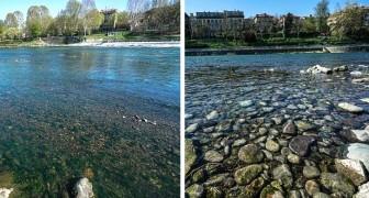 In Turijn is het water van de rivier de Po weer helder: een ander effect van de stop vanwege het Coronavirus