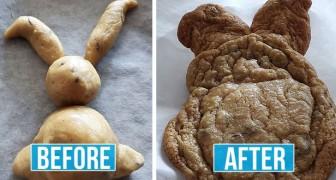 Quarantäne-Küche: 12 urkomische Bilder von katastrophalen Rezepten, die von improvisierten Köchen ausprobiert wurden