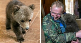 Ein Farmer adoptiert ein Bärenjunges, das verwaist war: Es war auf der Suche nach Nahrung bis zu seinem Dorf gegangen