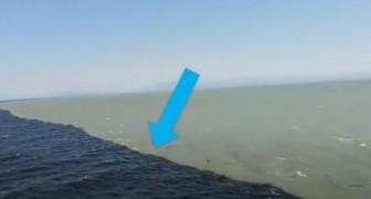 Les eaux de l'océan et les glaciers se rencontrent sans jamais se mélanger : le phénomène étonnant dans le golfe d'Alaska
