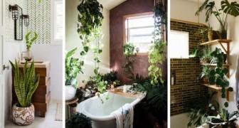 13 ottimi spunti da cui trarre ispirazione per arredare il bagno con le piante