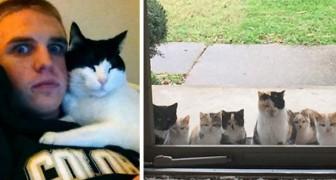 20 keer wanneer katten hun baasjes hebben gekozen zonder hen een alternatief te bieden