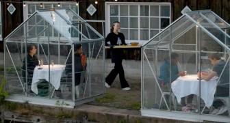 Coronavirus: un ristorante costruisce delle piccole serre per ospitare i clienti rispettando il distanziamento sociale