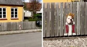 Der Hund schaut immer aus dem Loch im Zaun heraus: Zur Freude der Passanten malt das Frauchen zwei Kostüme