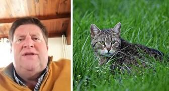 Katzen abschaffen zum Schutz der Vögel: der schockierende Vorschlag des Präsidenten des französischen Jägerverbandes