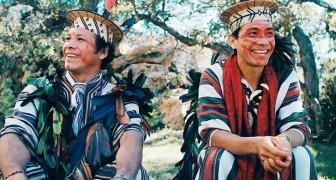 Une tribu amazonienne remporte un procès contre des exploitants forestiers illégaux : 3 millions de dollars de dédommagement