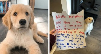 A 10-year-old boy asks neighbors if he can becomes their new puppy's petsitter after the Coronavirus pandemic ends