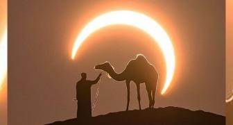 Während einer Sonnenfinsternis gelingt es einem Fotografen, die perfekte Aufnahme einzufangen, die einen zum Träumen bringt