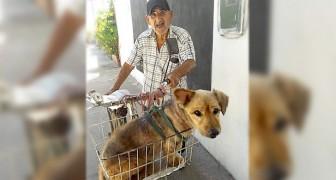 Op zijn 90e vervoert hij zijn hond met jicht op de fiets: hij kan niet meer lopen zoals hij ooit deed
