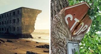 12 Beispiele, als die Natur sich durchgesetzt hat und sich nicht vom Menschen erobern ließ