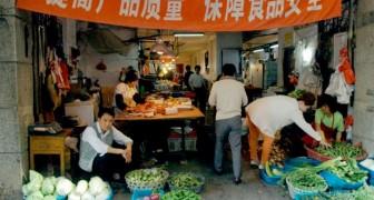 La città di Wuhan ha finalmente messo al bando il commercio di animali selvatici nei mercati umidi