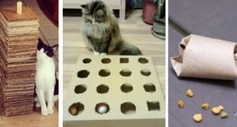 7 economici passatempi fai-da-te facili da realizzare per far divertire il vostro gatto