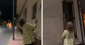 Uma mulher é surpreendida ao destruir 50 ninhos de andorinha com uma vassoura: ela corre o risco de ser presa
