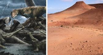 Le Maroc est l'endroit le plus dangereux de l'histoire de la Terre : dans l'Antiquité, il accueillait d'énormes prédateurs carnivores