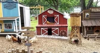 Een man bouwt een ministad voor de kippen van zijn vrouw: het lijkt op een westerse filmset