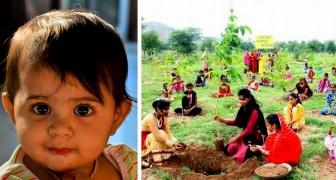 Questo villaggio pianta 111 alberi ogni volta che nasce una bambina: ora hanno un'intera foresta